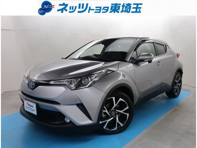 トヨタ G SDナビ Bカメラ ETC クルコン Bluetooth