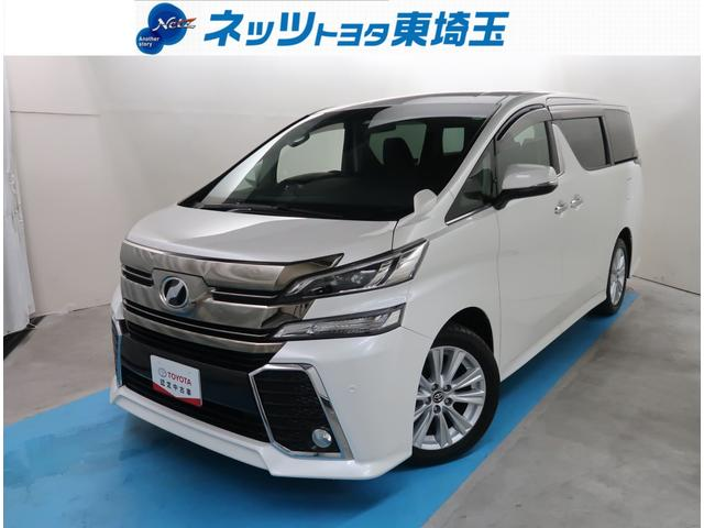 トヨタ 2.5Z アルパインSDナビ 後席TV ETC バックカメラ