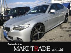 BMW523i フロントリップスポイラー ローダウン 社外19AW