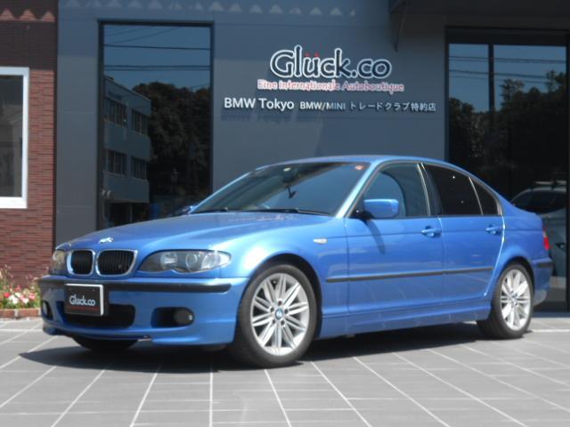 BMW 318i MスポーツLTD 2DINナビ ワンセグTV