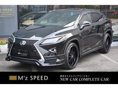 RXRX300−F ZEUS新車カスタムコンプリートローダウン