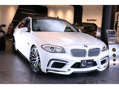 BMWAH5エナジーコンプリートカーEVO10.2 サンルーフ付
