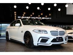 BMWアクティブハイブリッド5エナジーコンプリートEVO10.2