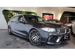 BMW523iツーリング ラグジュアリー エナジーEVO11.2