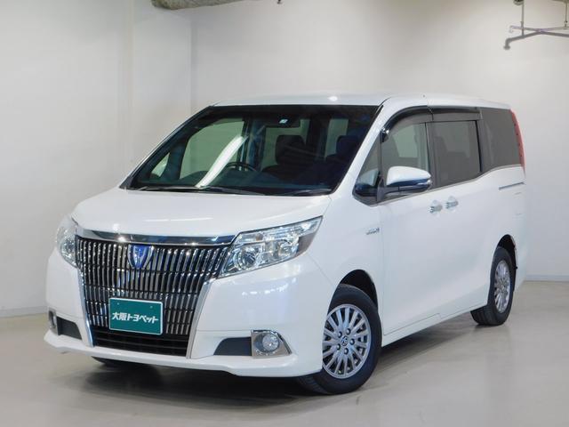 トヨタ ハイブリッドXi メモリ-ナビ スマートキー LED
