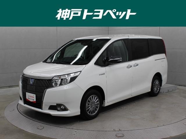 トヨタ ハイブリッドGi ブラックテーラード SDナビ TSS-C