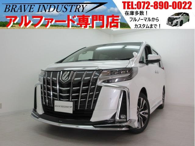 トヨタ SC新車 3眼モデリスタ フリップダウンモニターDオーディオ