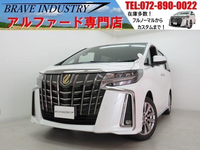 トヨタ Sタイプゴールド新車 3眼 フリップダウン 両電スラPバック