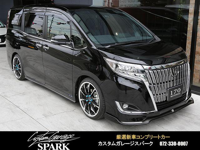 トヨタ Gi ジュールコンプリート 19アルミ 車高調 アルパイン