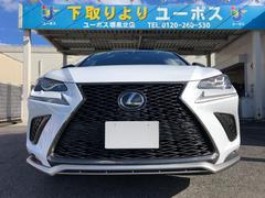 NXNX300 Fスポーツ 14日間限定販売車