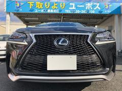 NXNX200t Fスポーツ 14日間限定販売車