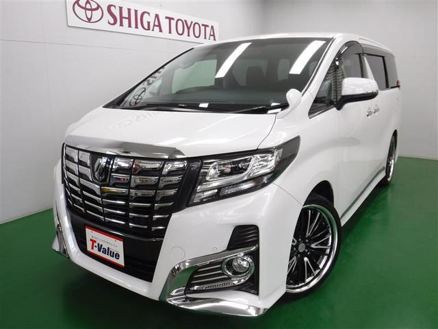 トヨタ S 社外アルミ スマートキ- メモリーナビ フルセグ ETC