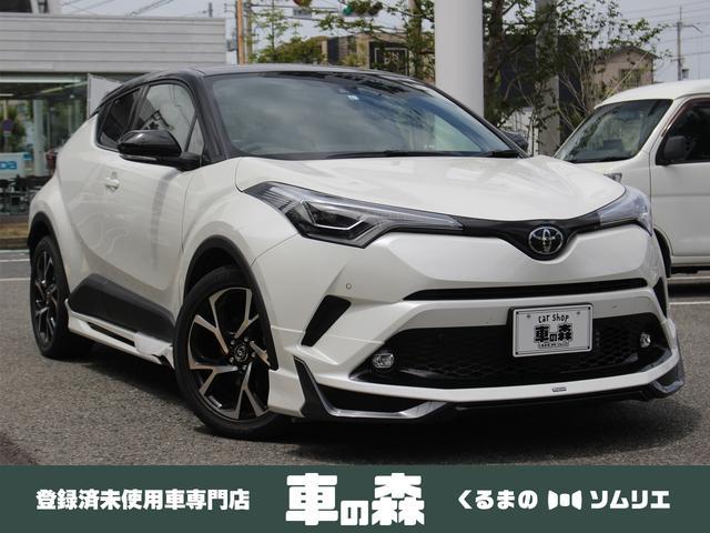 トヨタ G-T 登録済未使用車 モデリスタエアロ TSS RCTA