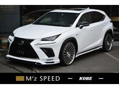 NXNX300 Fスポーツ ZEUS新車カスタムコンプリート