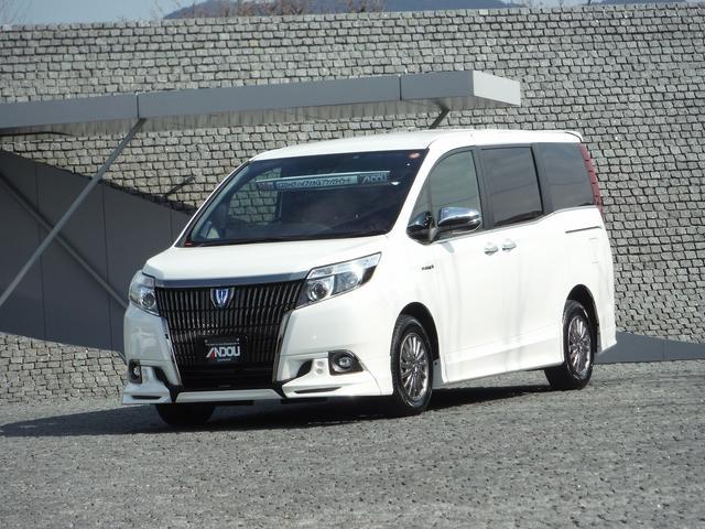 トヨタ ハイブリッドGi ブラックテーラード SDナビ地デジ TRD