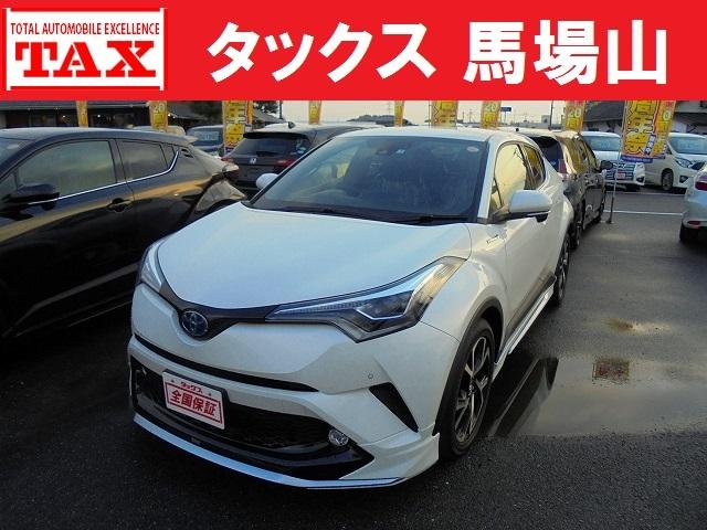 トヨタ G 本革シート 外ナビ フルセグ モデリスタエアロ 全国保証