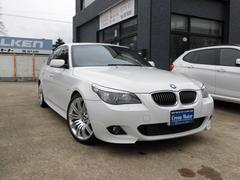 BMW530i MスポーツPKG 本革・OP19AW・地デジ