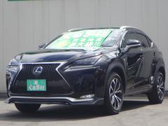 NXNX300h Fスポーツ SDマルチ SR 本革エアシート