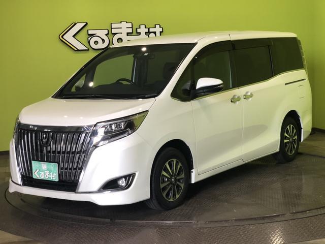 トヨタ Gi ナビ TSS-C 両自動ドア 合成皮革シート 8人乗