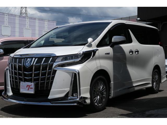 トヨタ SR Cパッケージ カロッツェリアナビ TV バックモニター