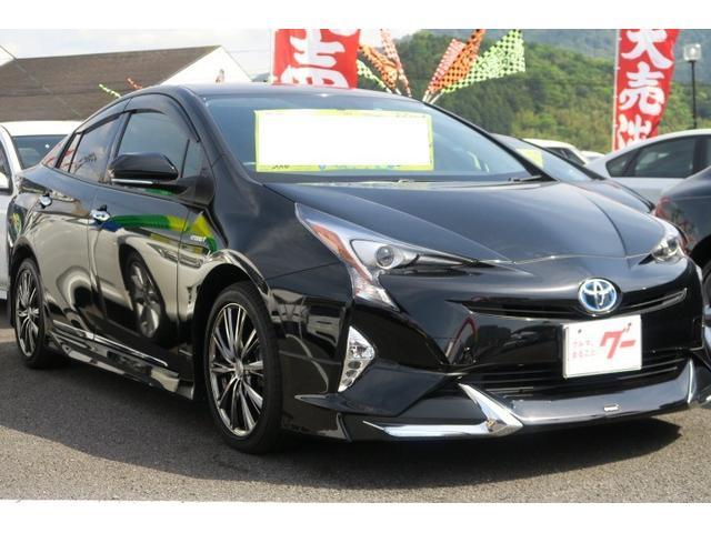 トヨタ Sツーリングセレクション 本革シート バックモニター ETC