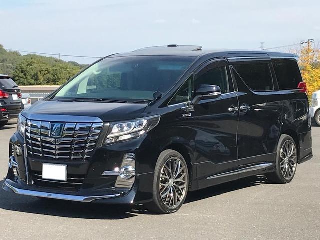 トヨタ SR Cパッケージ ビックナビ フリップダウン モデリスタ