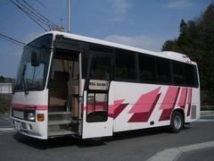 ヒノレインボーRサルーン 観光仕様 29人乗り