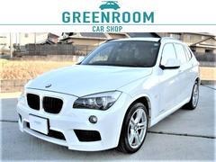 BMW X1sDrive 18i Mスポ ドラレコ Bカメラ 地デジナビ