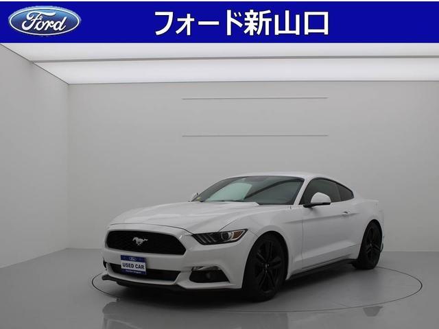 フォード 50イヤーズ エディション 純正SDナビ DTV
