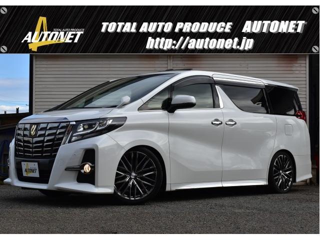 トヨタ 2.5S Apkg タイプBK ツインSR レオニス20AW