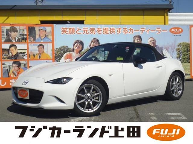 マツダ NR-A ビルシュタイン車高調 スーパートルセンLSD
