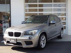 BMW X1sDrive 18i 社外HDDナビ Bカメ 18AW
