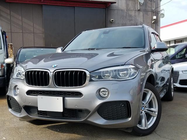 BMW xDrive 35d Mスポーツ 革 SR ナビ・カメラ
