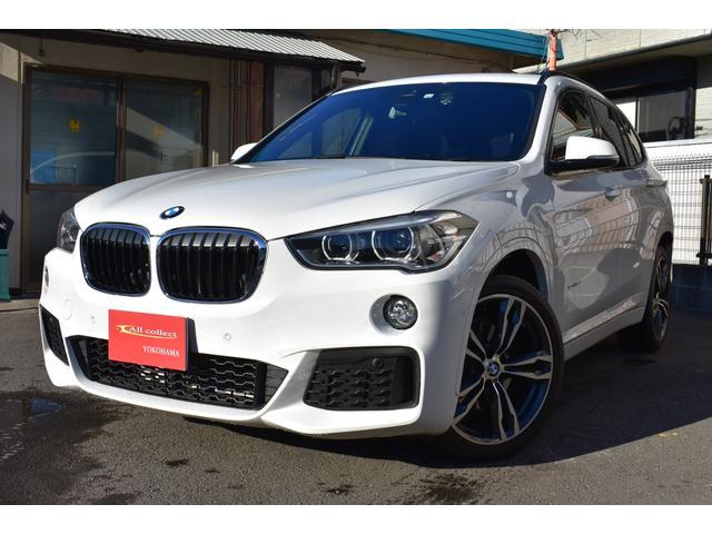BMW sDrive 18i Mスポーツ 左右パワーシート パワーテールゲート オプション19インチAW 純正ナビ 地デジ Bカメラ