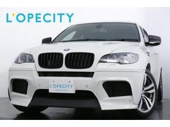BMW X6 Mベースグレード サンルーフ コンフォートPKG アクセス