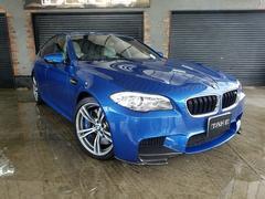 BMWM5 サンルーフ OPホイール 白革シート 地デジ