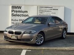 BMW523dブルーパフォーマンス ハイラインPKG 地デジ