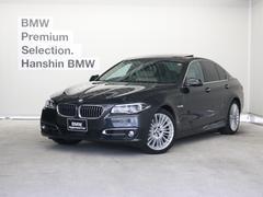 BMWアクティブハイブリッド5 ラグジュアリーACC19AW革
