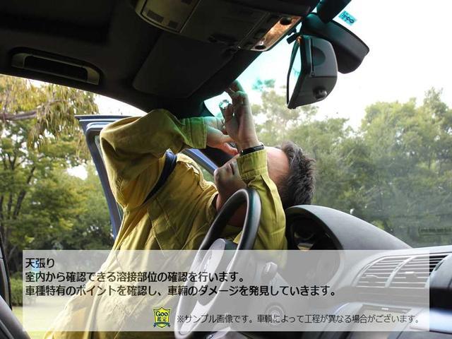 エレガンスライン パワーテールゲート 地デジナビ 前車追従(25枚目)
