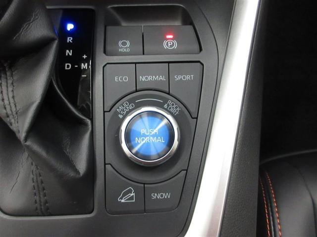 アドベンチャー 4WD フルセグ DVD再生 ミュージックプレイヤー接続可 バックカメラ 衝突被害軽減システム LEDヘッドランプ(11枚目)