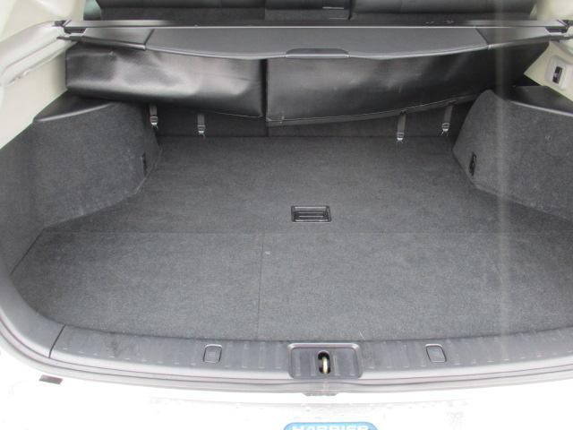 プレミアムSパッケージ 4WD 18インチアルミ ナビ(11枚目)