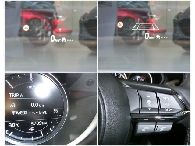 2.5 25S スマート エディション 4WD(11枚目)