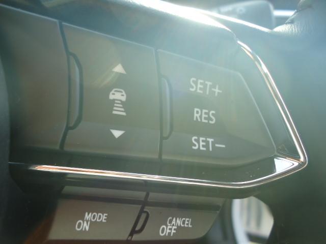 25T プロアクティブ4WD 360度ビューモニター LED(19枚目)