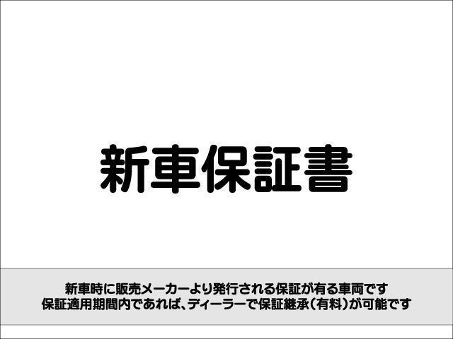 Z 4WD 後期型 TV 両側自動ドア ローダウン HID(28枚目)