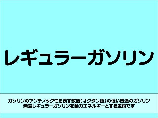 Z 4WD 後期型 TV 両側自動ドア ローダウン HID(30枚目)