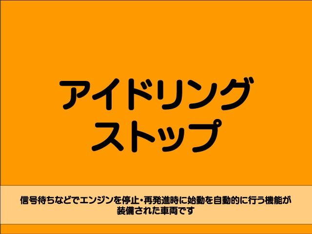 Z 4WD 後期型 TV 両側自動ドア ローダウン HID(40枚目)