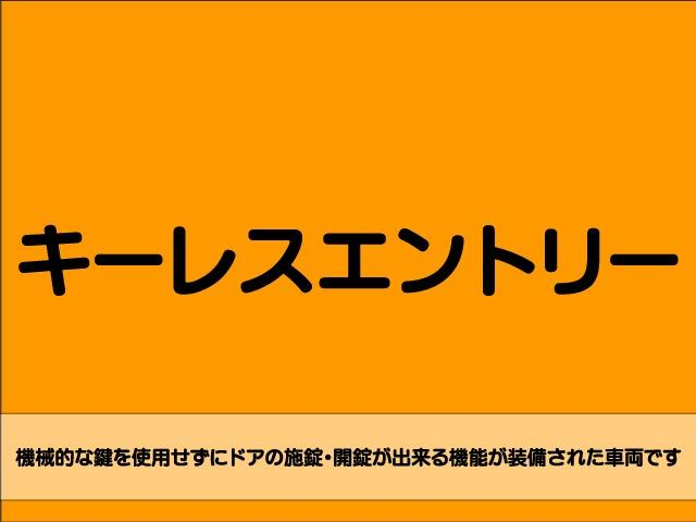 Z 4WD 後期型 TV 両側自動ドア ローダウン HID(47枚目)