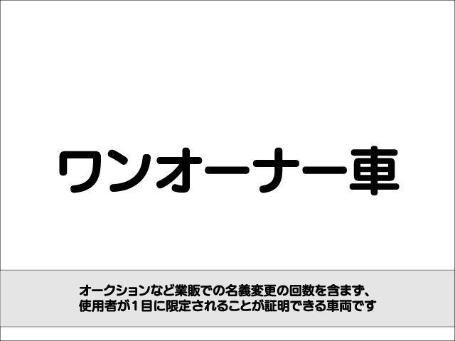 X フルタイム4WD E-Four ワンオーナー 純正HDDナビ 純正フリップダウンモニター TV DVD 両側パワースライドドア スマートキー ビルトインETC HIDヘッドライト バックガイドカメラ(28枚目)