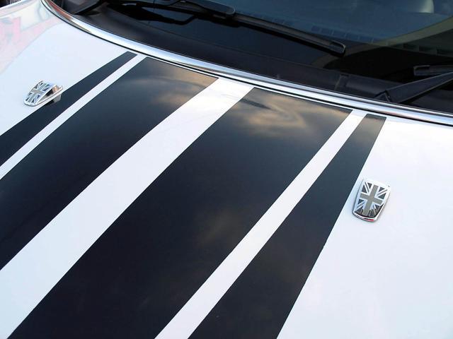 「MINI」「MINI」「SUV・クロカン」「山梨県」の中古車14