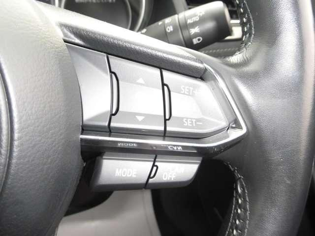 2.2 XD Lパッケージ ディーゼルターボ 4WD SDカ(13枚目)